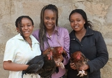 Three girls with chickens